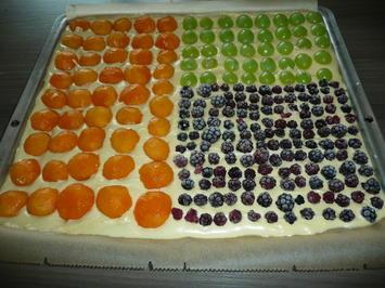 Aprikosen -Trauben - Brombeerkuchen mit Streusel. - Rezept - Bild Nr. 616