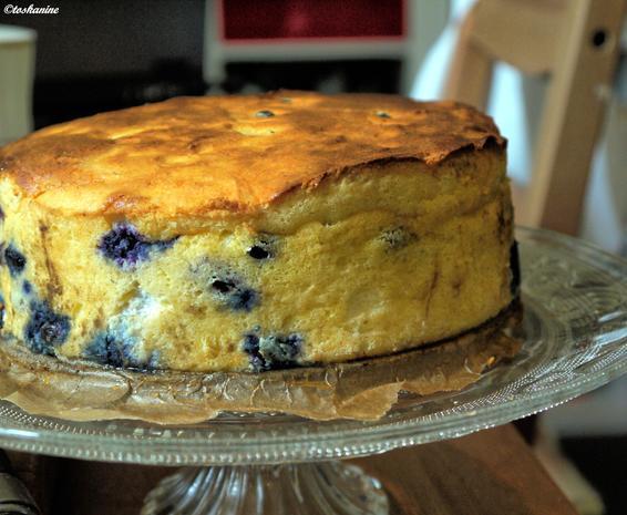 Blaubeer-Käsekuchen - Rezept - Bild Nr. 871