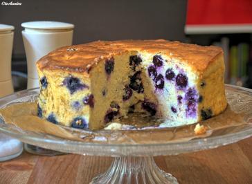 Blaubeer-Käsekuchen - Rezept - Bild Nr. 872