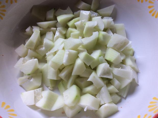 Reisnudelsalat mit Hackfleisch und grüner Papaya - Rezept - Bild Nr. 883