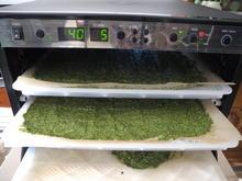 Grüne Kräcker - Rezept - Bild Nr. 886