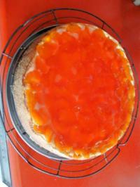 Mandarinen-Käsekuchen mit Pudding - Rezept - Bild Nr. 886