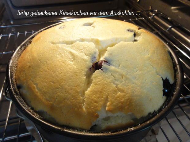 KuchenZwerg:   KÄSEKUCHEN mit Blaubeeren - Rezept - Bild Nr. 921