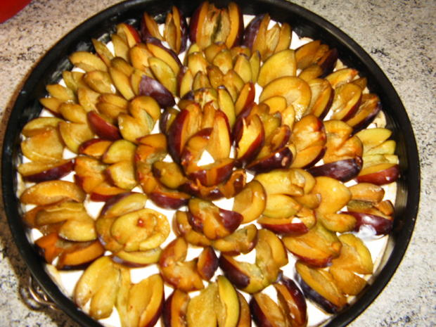 Quark-Pflaumen-Kuchen - Rezept - Bild Nr. 1423