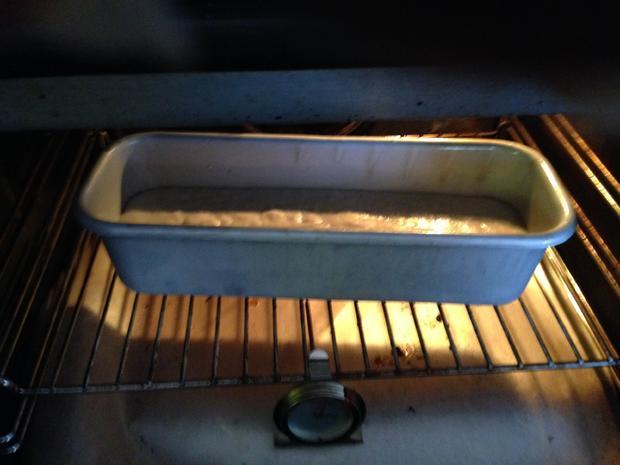 Kartoffelbrot - Rezept - Bild Nr. 2102