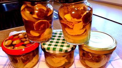 Pilze in Gewürzsud eingelegt und haltbar gemacht - Rezept - Bild Nr. 1648