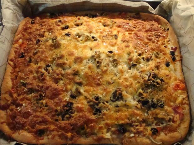 Bunte Pizza mit Quark- Öl-Teig pikant - Rezept - Bild Nr. 2042