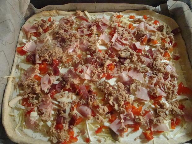 Bunte Pizza mit Quark- Öl-Teig pikant - Rezept - Bild Nr. 2050