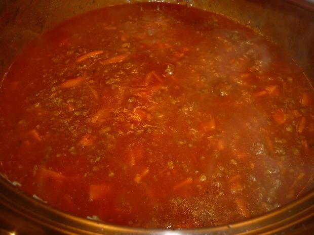 Spaghetti mit Tomaten - Hackfleisch - Soße  - Rezept - Bild Nr. 3717