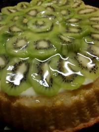 Tortenboden mit Kiwi  - Rezept - Bild Nr. 3880