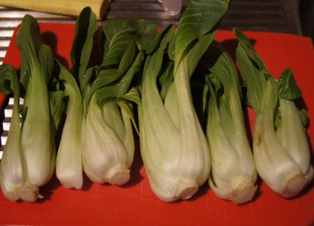 Warmer Baby Pak Choi Salat mit Hähnchenbrustfiletstreifen - Rezept - Bild Nr. 4439