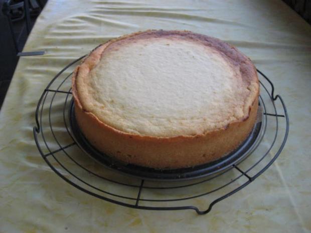 Käsekuchen mit Kokosmilch und Kirschen - Rezept - Bild Nr. 5048