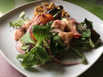 Ceviche von Austernpilzen - Rezept