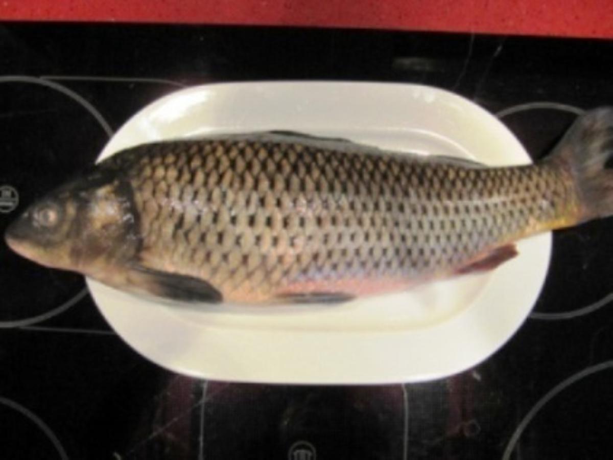 Fisch / Karpfen = Ganzer Karpfen auf Glas gezogen gegart à la Biggi - Rezept Durch cockingcool