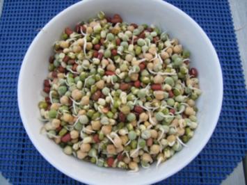 Rezept: Biggi`s Salate = Mediteraner Salat mit jungen Sprossen