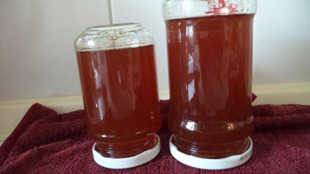 Tee-Gelee Orange-Vanille - Rezept - Bild Nr. 3