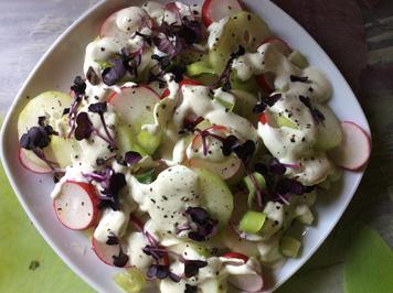 Gurken-Radieschen-Salat mit Schmand Dressing - Rezept