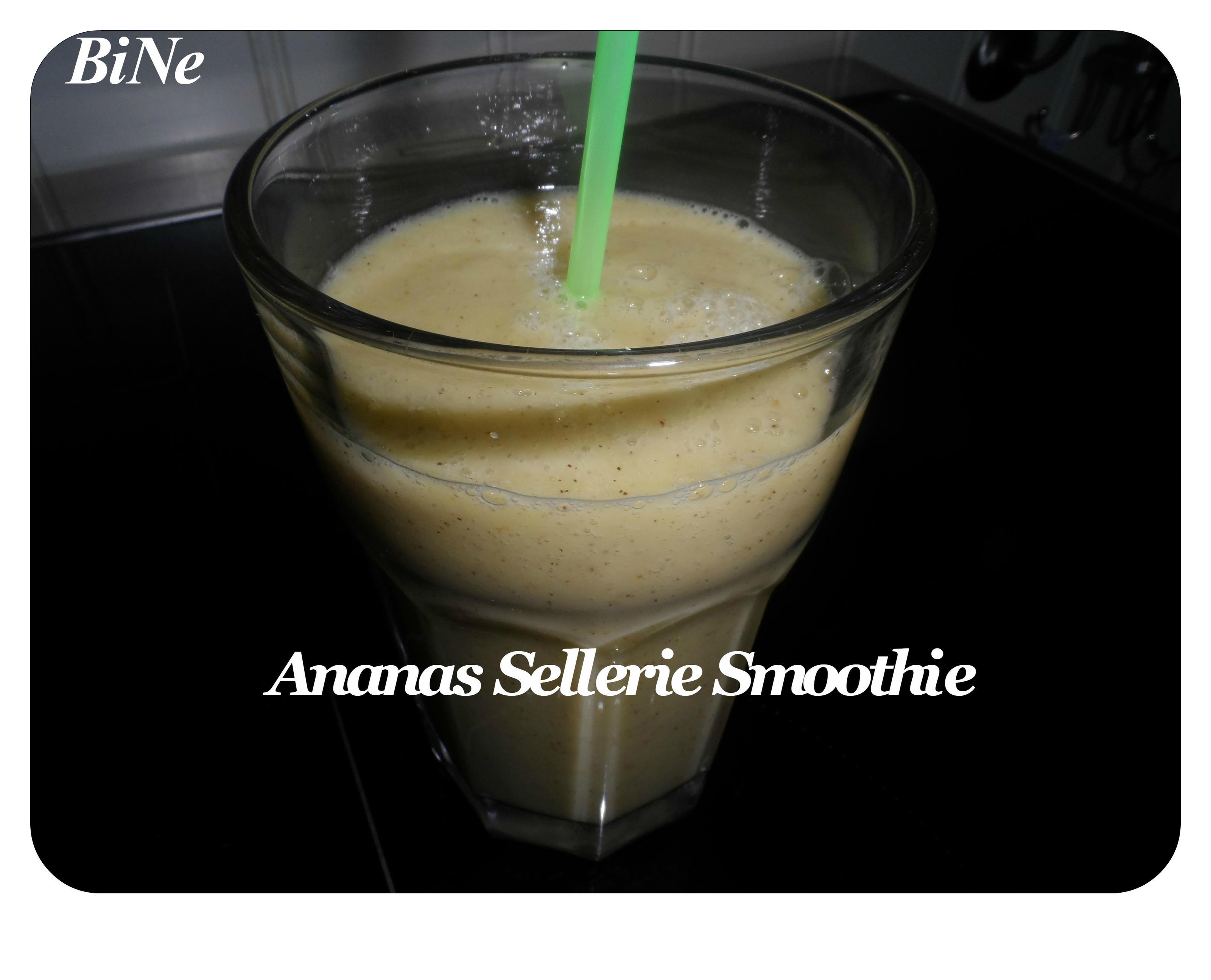 BiNe` S ANANAS SELLERIE SMOOTHIE - Rezept Eingereicht von Bine13100