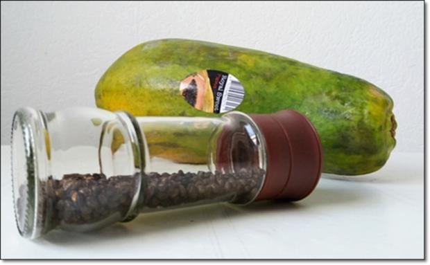 Papayapfeffer  selbst  herstellen - Rezept - Bild Nr. 42