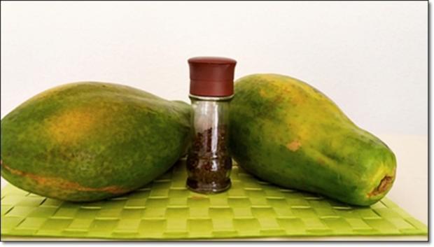 Papayapfeffer  selbst  herstellen - Rezept - Bild Nr. 50