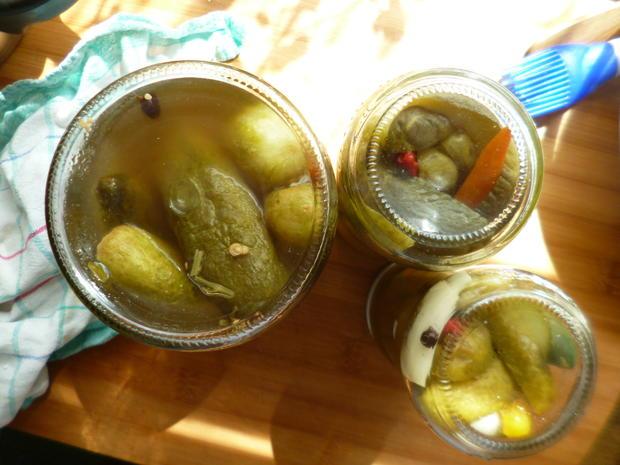 Eingemachte Saure Gurken mit Paprika und Chili - Rezept - Bild Nr. 47