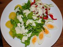 Salatteller mit Quäse, Ei & Joghurtdressing - Rezept
