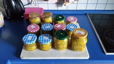 Rezept: Eingekochter Gurkensalat