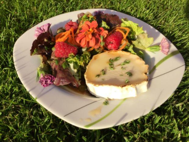 Lidl salat walnuss ziegenkase
