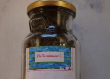 Bio-Pfefferminztee aus eigenem Garten - Rezept