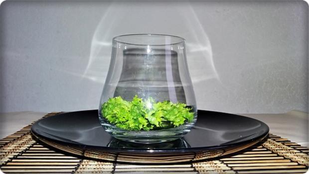 Schichtsalat im Glas zum Frühstück oder für  zwischendurch - Rezept - Bild Nr. 1334