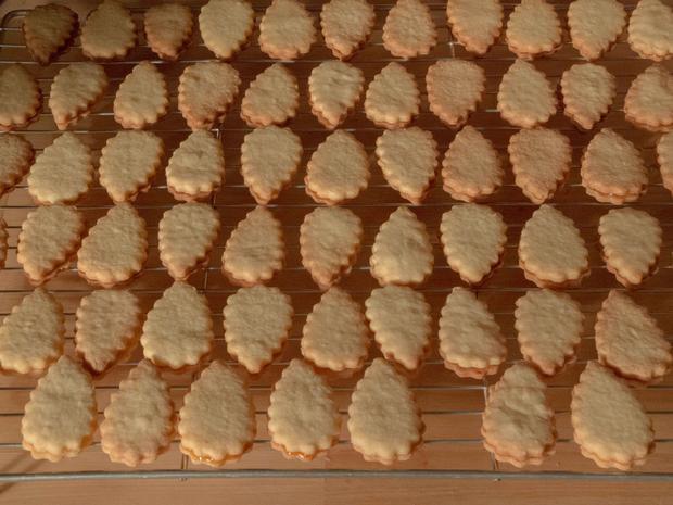 Plätzchen: Aprikosenblätter - Rezept - Bild Nr. 1411