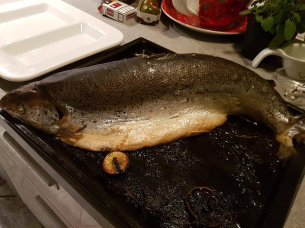 """Fisch / Lachs = ein """"Ganzer"""" Lachs mit Zitronenbuttersosse  à la Biggi - Rezept - Bild Nr. 9"""