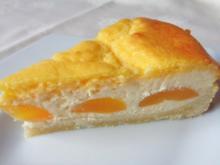 Aprikosen - Käse - Kuchen mit Eierschecke ... - Rezept - Bild Nr. 2059