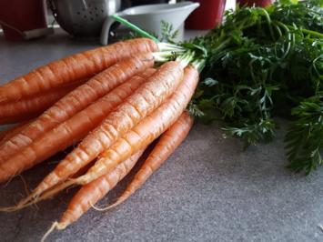 Biggi`s Gemüsebeilagen = Baby oder Finger Möhren im Gewürzmantel - Rezept - Bild Nr. 2