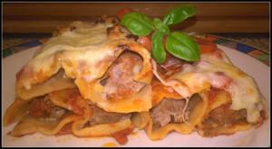 gefüllte Cannelloni mit Camembert und Gehackten - Rezept - Bild Nr. 2167