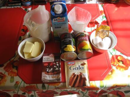 Schokokuchen mit Ananas und Mangos - Rezept - Bild Nr. 2366