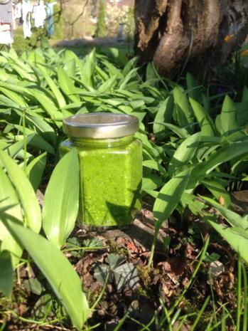 Crysyl's Frühlings-Pesto - Rezept - Bild Nr. 2449