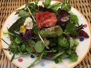Gemischter Blattsalat mit gebackenem Ziegenkäse - Rezept - Bild Nr. 2