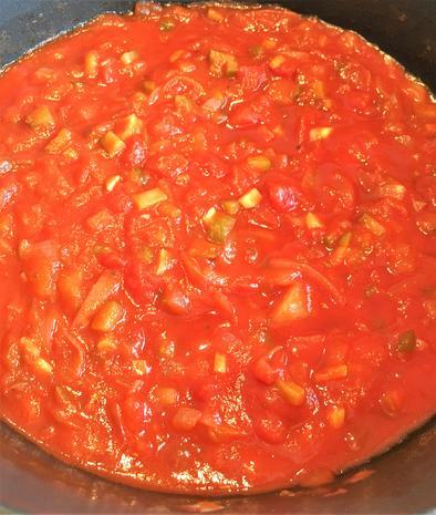 Schaschlik vom Hühnchen mit pikanter Sauce - Rezept - Bild Nr. 2789