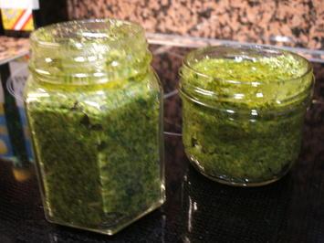 Rezept: Gewürzmischungen: Giersch-Pesto