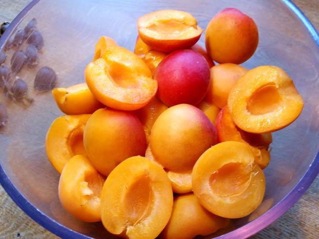 Aprikosen-Eierlikör-Kuchen - Rezept - Bild Nr. 2966
