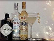 James Bond ➯ Vodka Martini - Rezept - Bild Nr. 12
