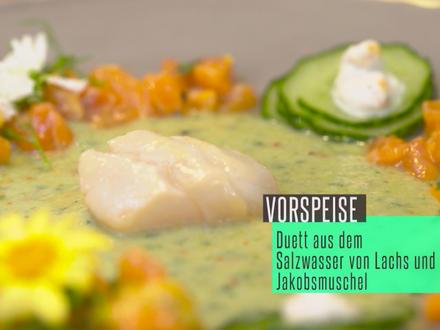 Duett aus dem Salzwasser: Lachstatar und Jakobsmuschel mit Gurke und Ingwer - Rezept - Bild Nr. 2