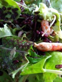 Salat mit Flusskrebsen und schwarzem Reis - Rezept - Bild Nr. 3033