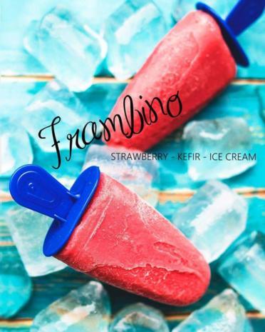FRAMBINO - Erdbeer - Kefir - Eis - Rezept - Bild Nr. 3072