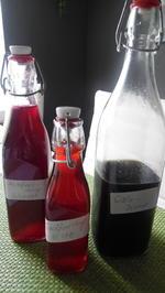 Sirup für Getränke, Slush-Eis und Desserts - Rezept - Bild Nr. 3090