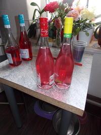 Lavendelsirup - Rezept - Bild Nr. 3133