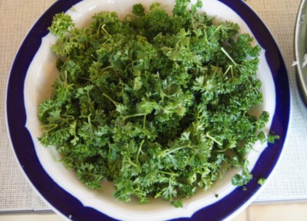 Rindfleisch-Gemüse-Suppe - Rezept - Bild Nr. 3240