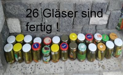 Eingelegte Gewürzgurken nach Drahuse - Rezept - Bild Nr. 3378