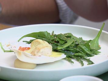 Jakobsmuschel, Parmesan, Queller-Rucola-Salat, Safran-Sahnesoße - Rezept - Bild Nr. 3528